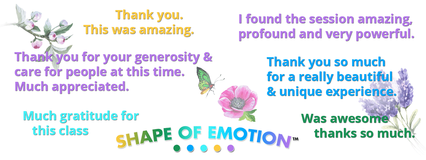 5th-Place-Shape-of-Emotion-experience-feedback